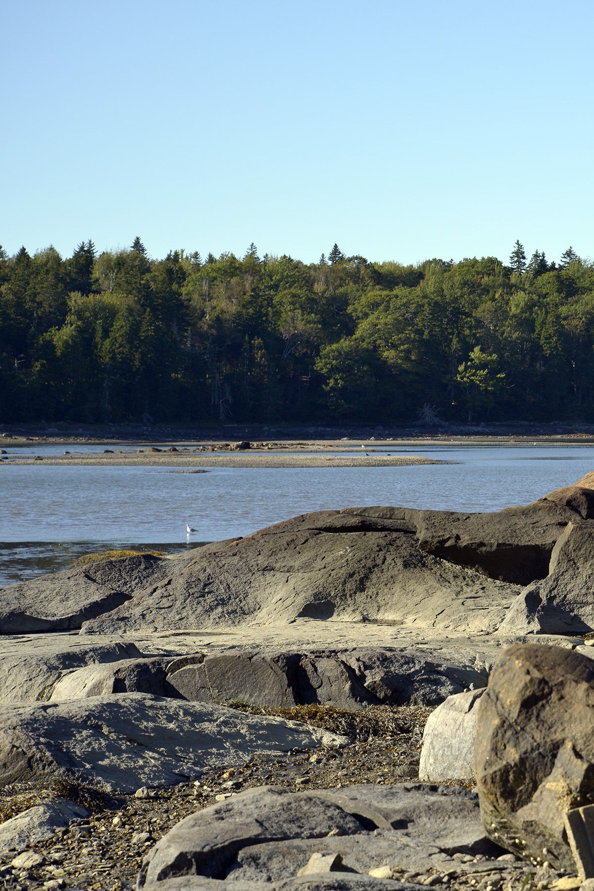 River Watch - Waterfront Vacation Rental - Mid-coast Maine