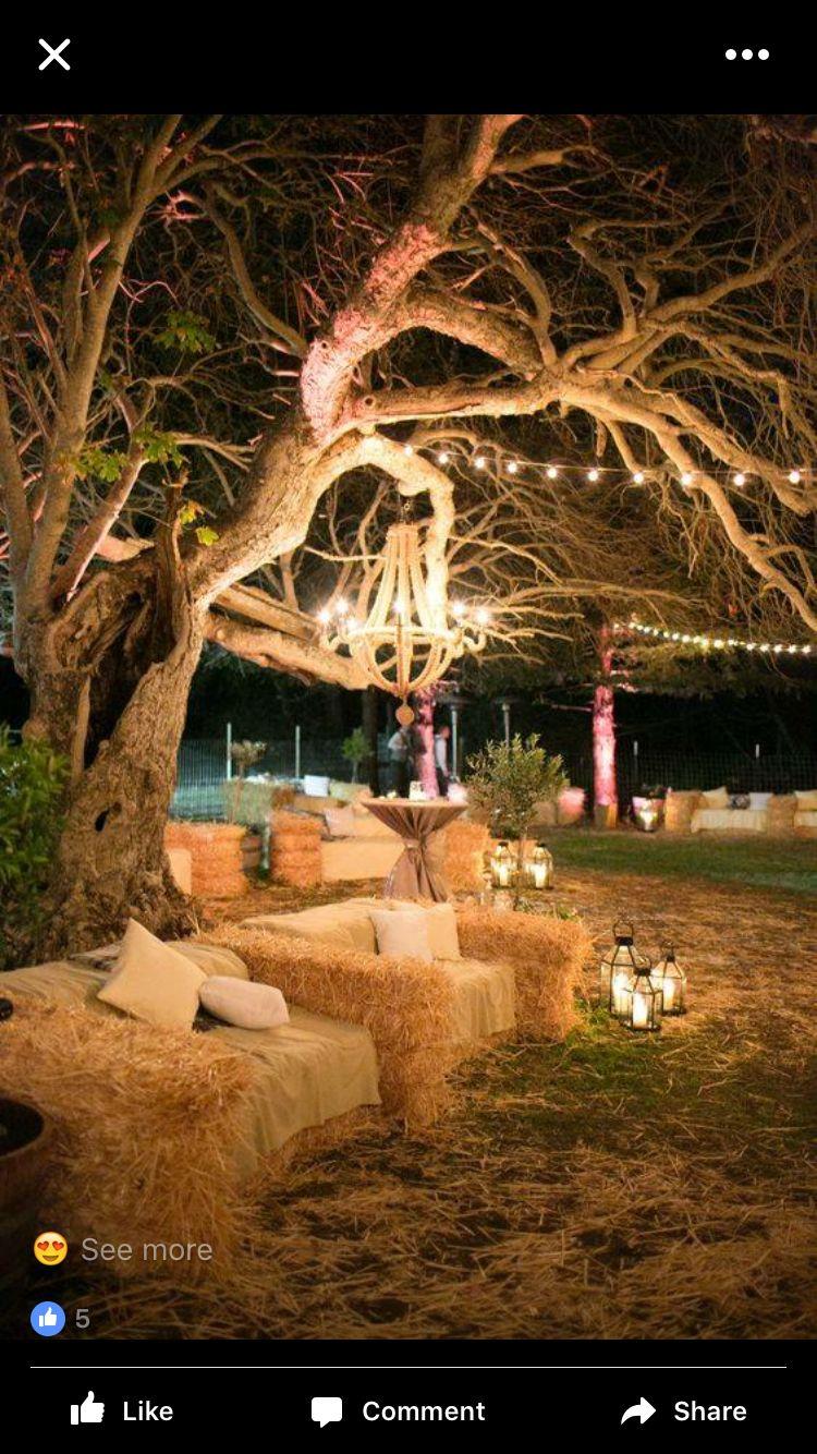 Hochzeitsort Gartenparty Hochzeit Hochzeit Beleuchtung Bauernhochzeit