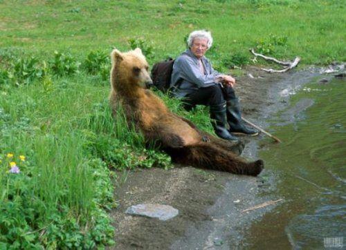 Furry friend forlorn