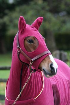 pink horse stuff - Google Search