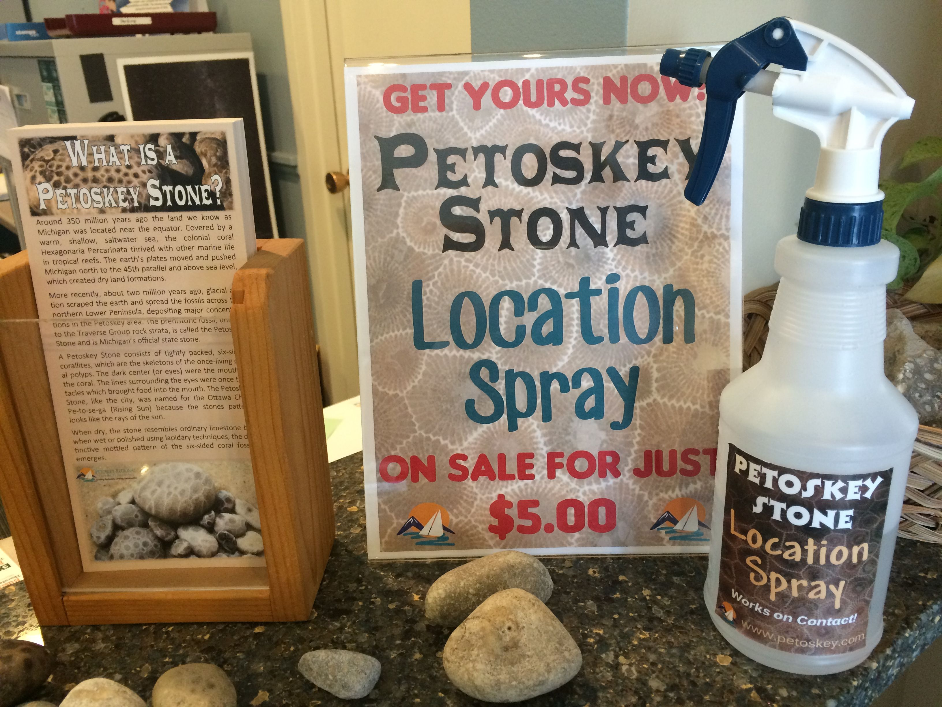 Everything you need for successful Petoskey Stone hunting