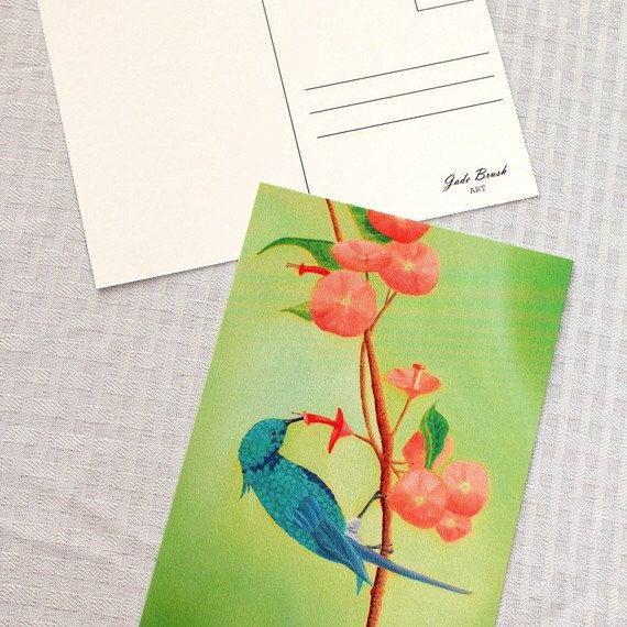 New blue hummingbird feeding from pink flowers postcards are in! I am so ready for spring time, how about you? 🌷😄