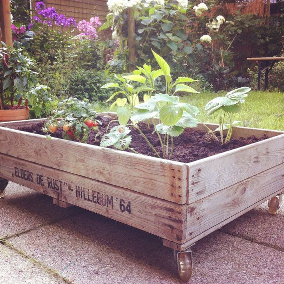 Mobiel moestuintje gemaakt van 70 jaar oude van blommenbak op etsy flowerpot vegetable garden do it yourself garden by blommenbak solutioingenieria Images