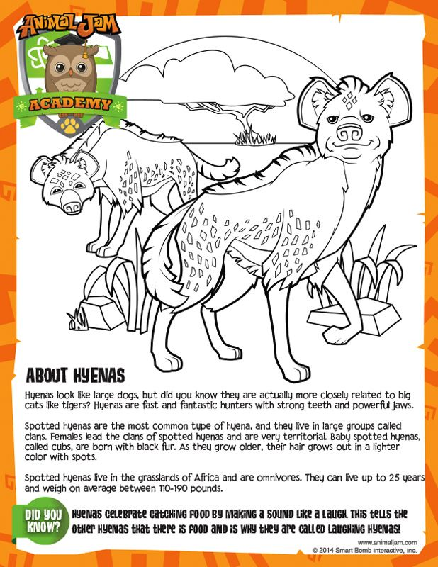 hyena coloring sheet animal jam academy learn about hyenas and color your own