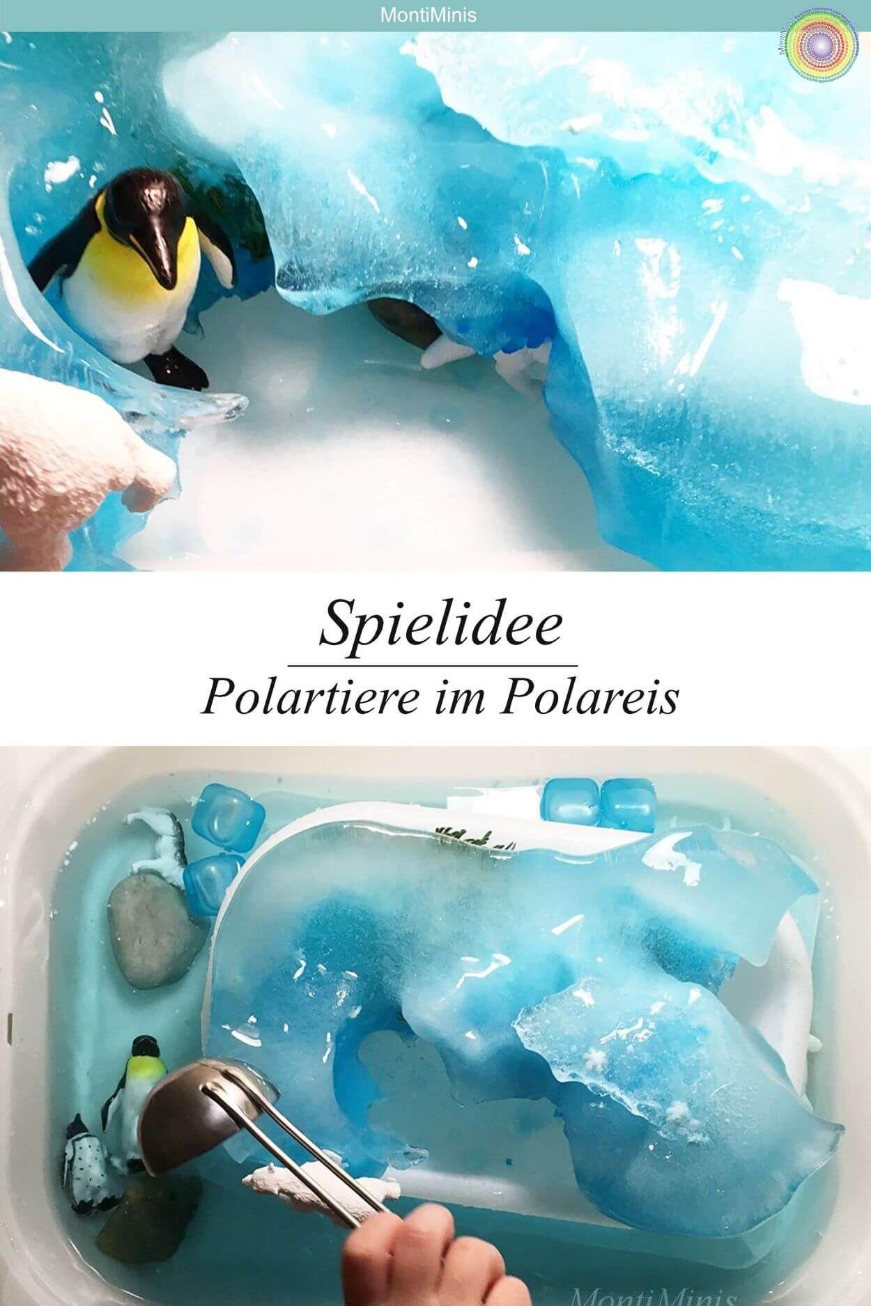 Winterliche Spielidee Wir Erforschen Gletscher Und Polartiere Montessori Blog Shop Montiminis Polar Tiere Spielideen Fur Kinder Spielideen