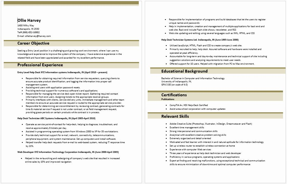 Information Technology Resume Template Awesome Entry Level ...