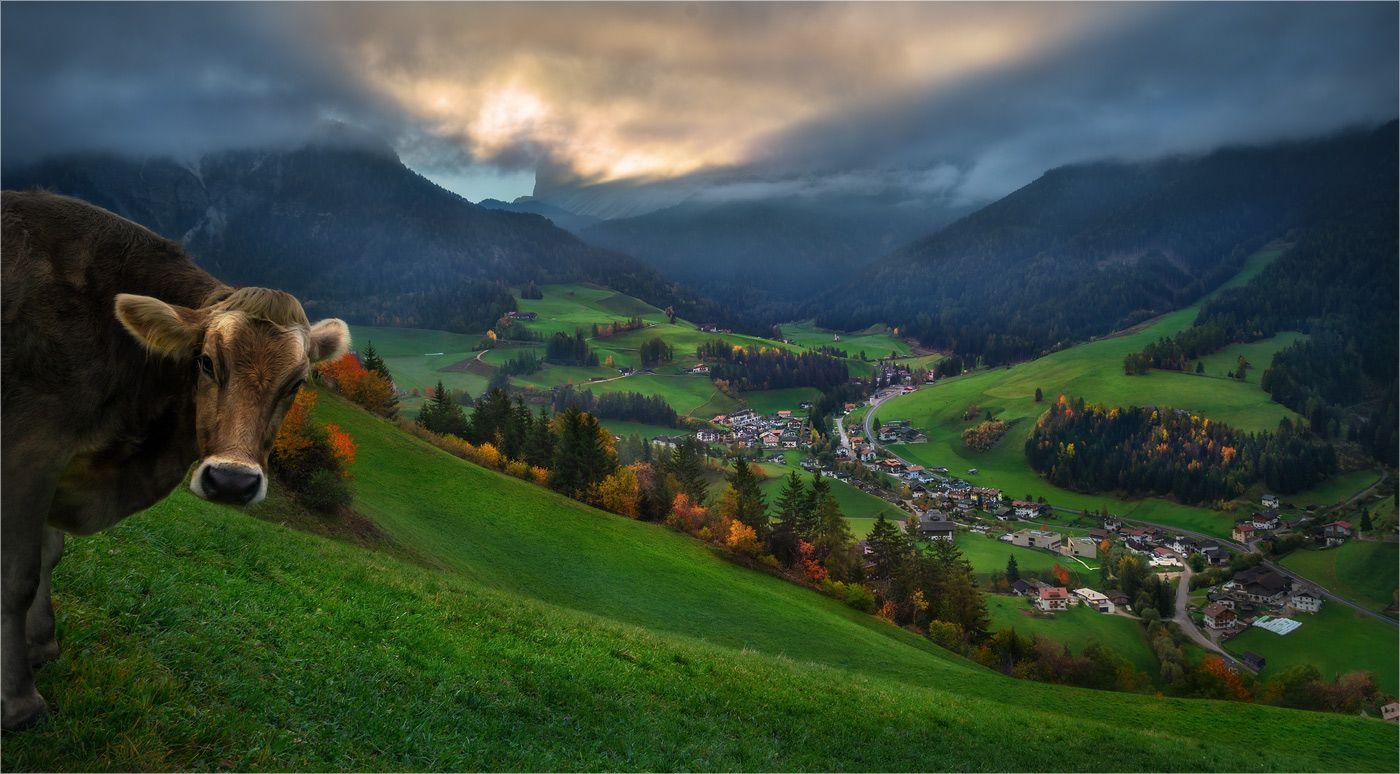"35PHOTO - Александр Киценко - ""Tales of Dolomites"""