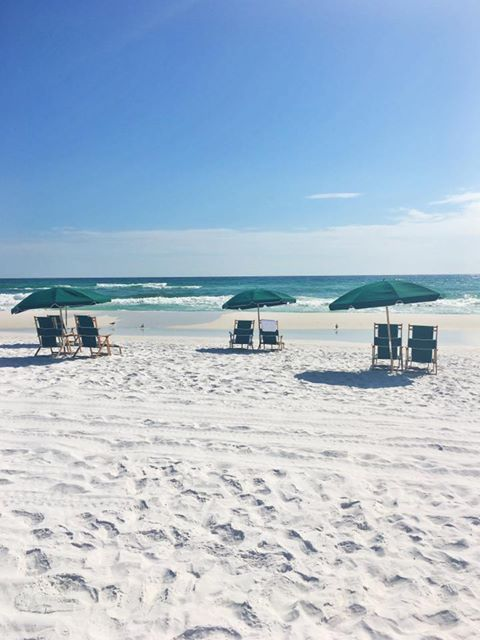 Just Another Sunny November Day In Destin