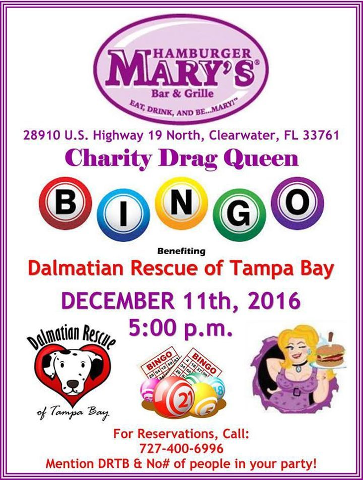Florida, we do love our dogs, don't we? Two fun events