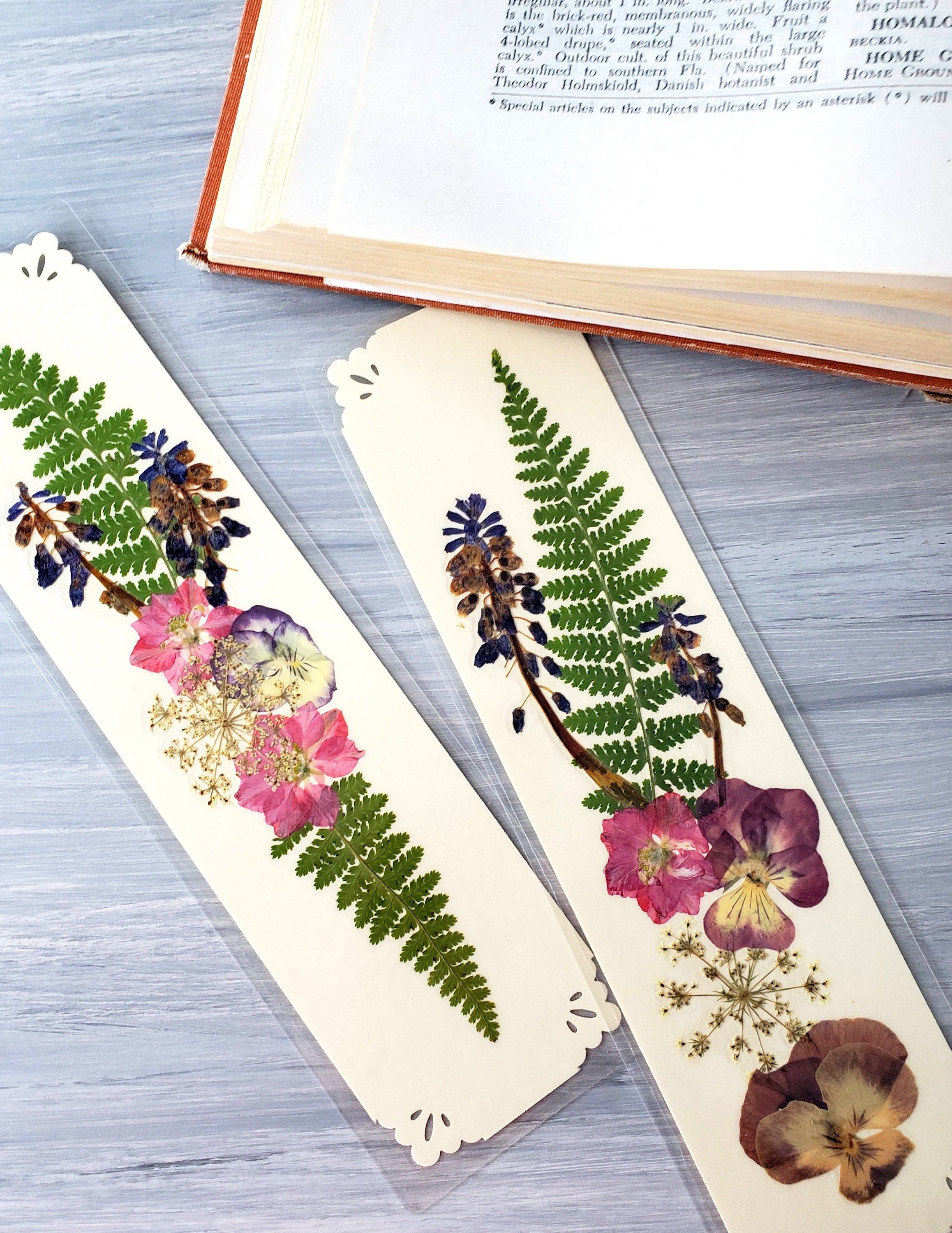 Pin On Pressed Flowers