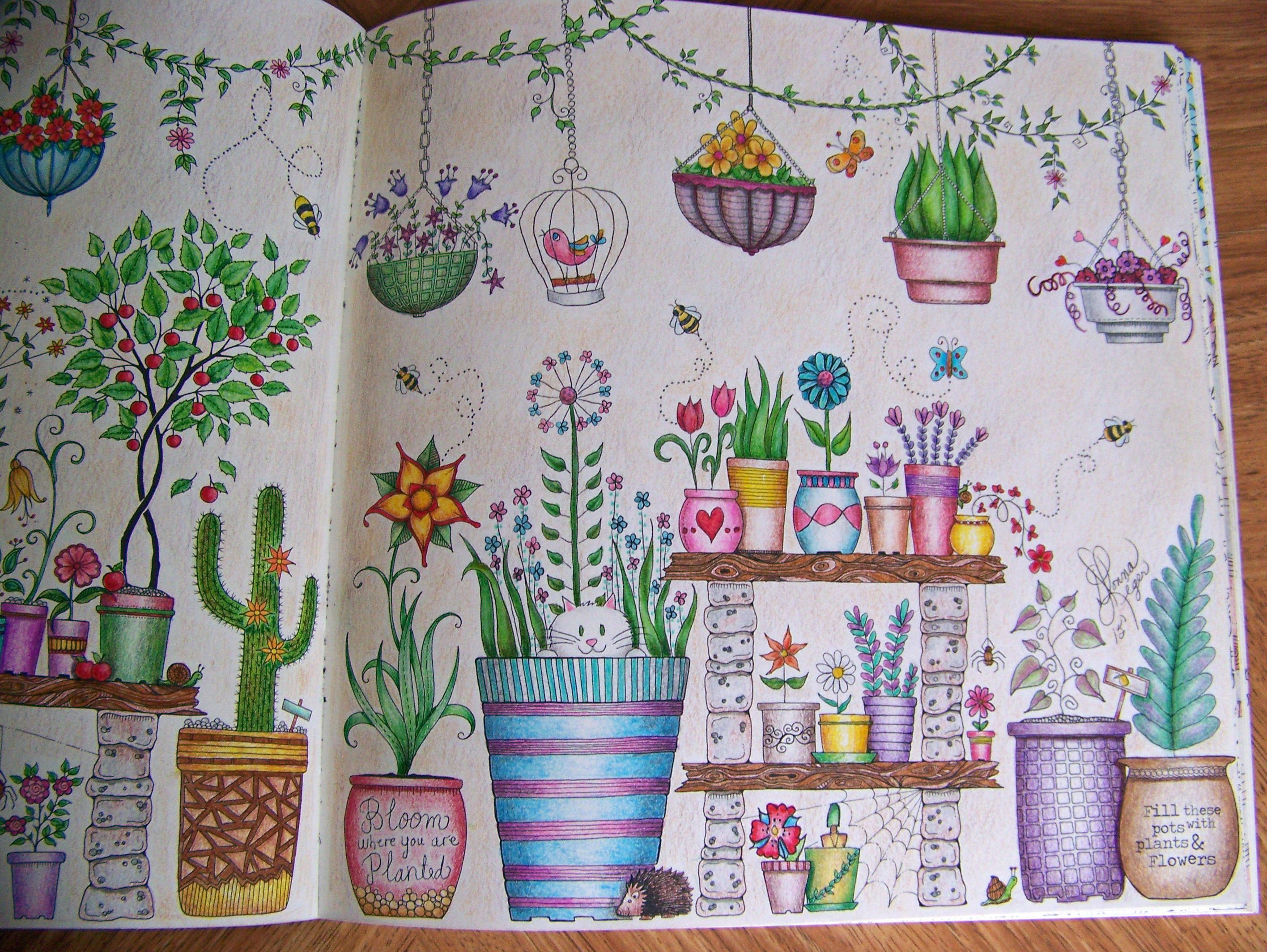 Page 2 View From The Secret Garden Book By Johanna