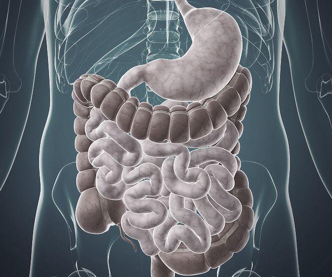 Hvorfor du opplever å ha magen i ubalanse