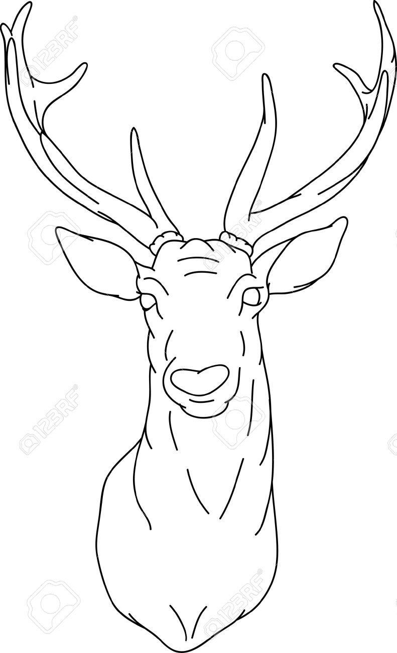 Line Art Deer : How to draw a deer head google search drawings