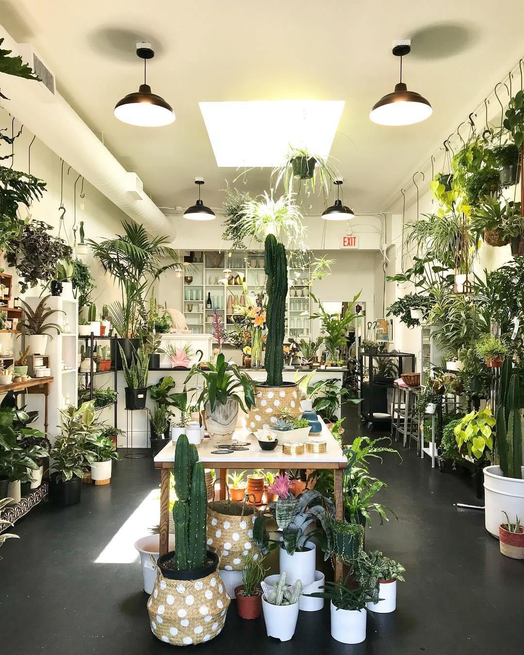 Portland Oregon Plant Shop Roundup In 2020 Flower Shop Interiors Flower Shop Decor Flower Shop Design