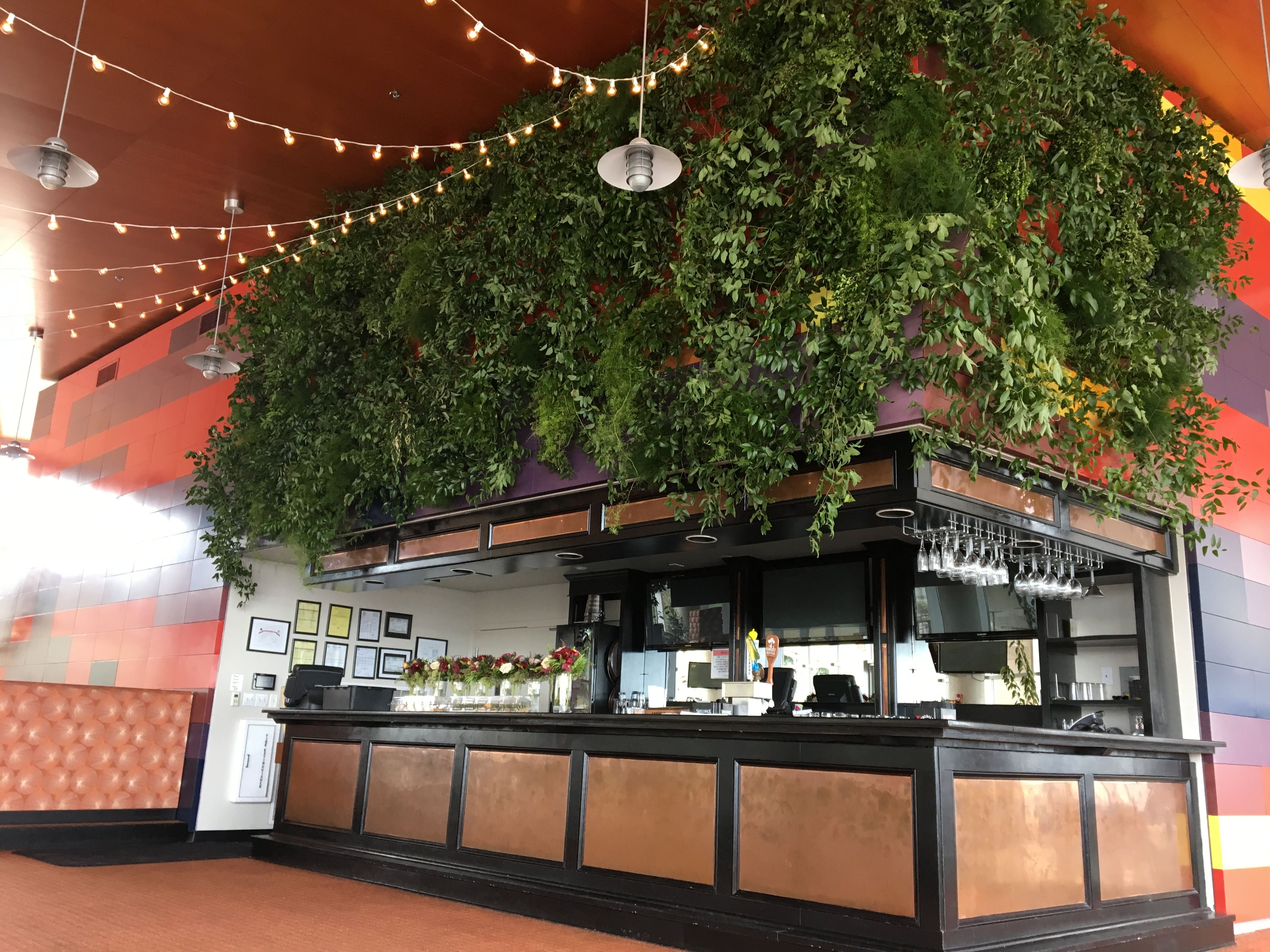 Even in the most obscure places we can bring the outside in! A live green wall to warm up this space here at Beale St. Landing. Custom Design by Holliday Flowers and Events Team