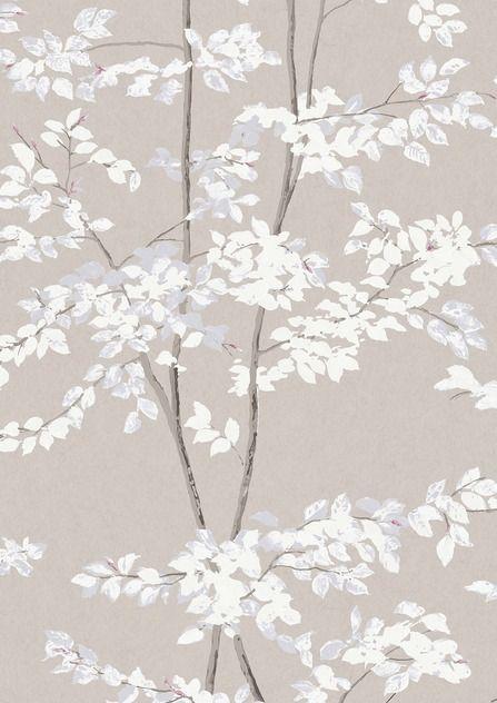 Tree Design Wallpaper Living Room: Beech Wide Width Wallpapers