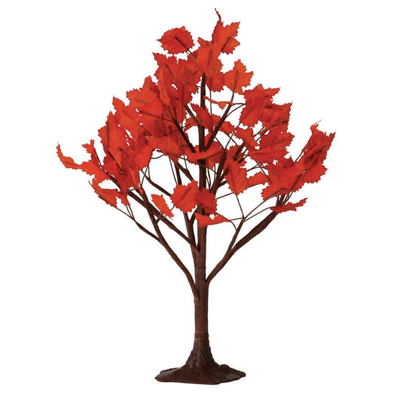 """9"""" Maple Tree"""