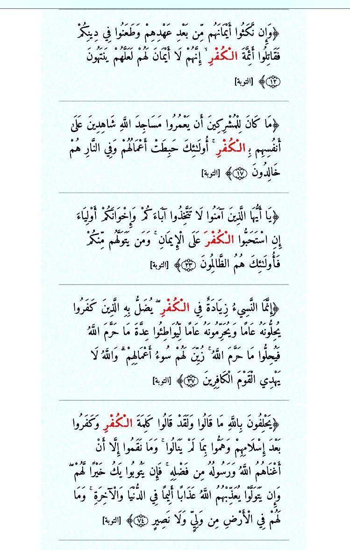 الكفر ست مرات في سورة التوبة Holy Quran Quran Verses Verses