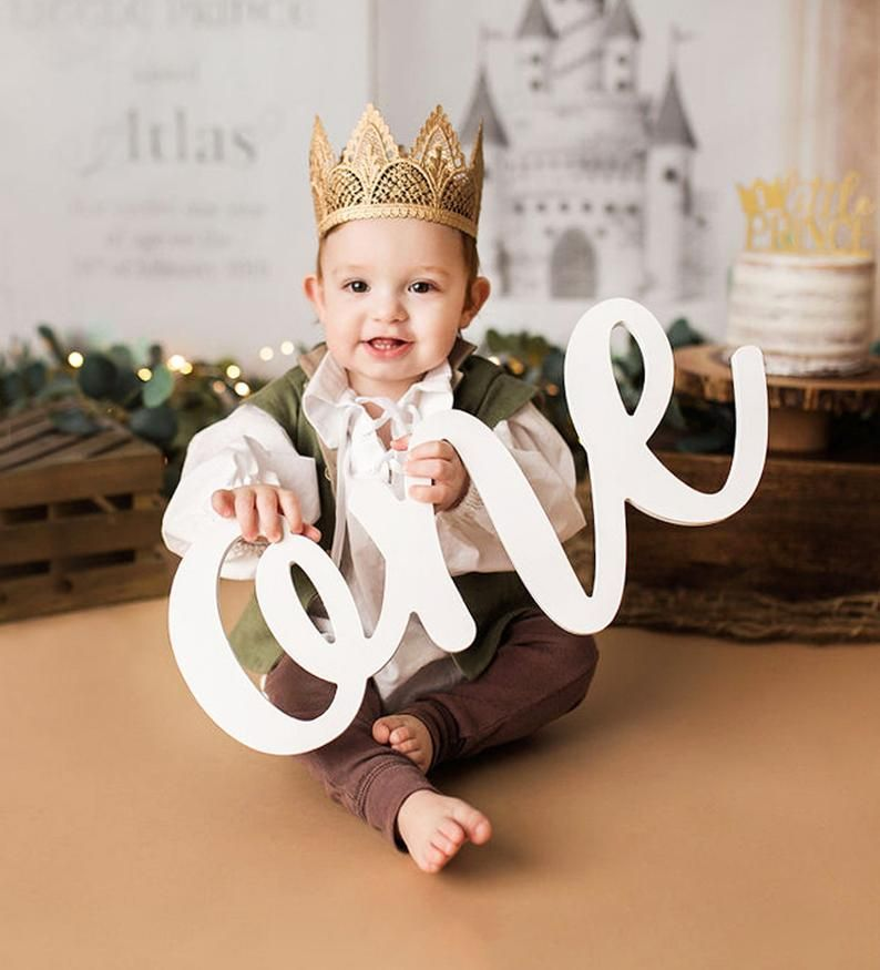 One Sign Photo Prop for First Birthday Photo Shoot for
