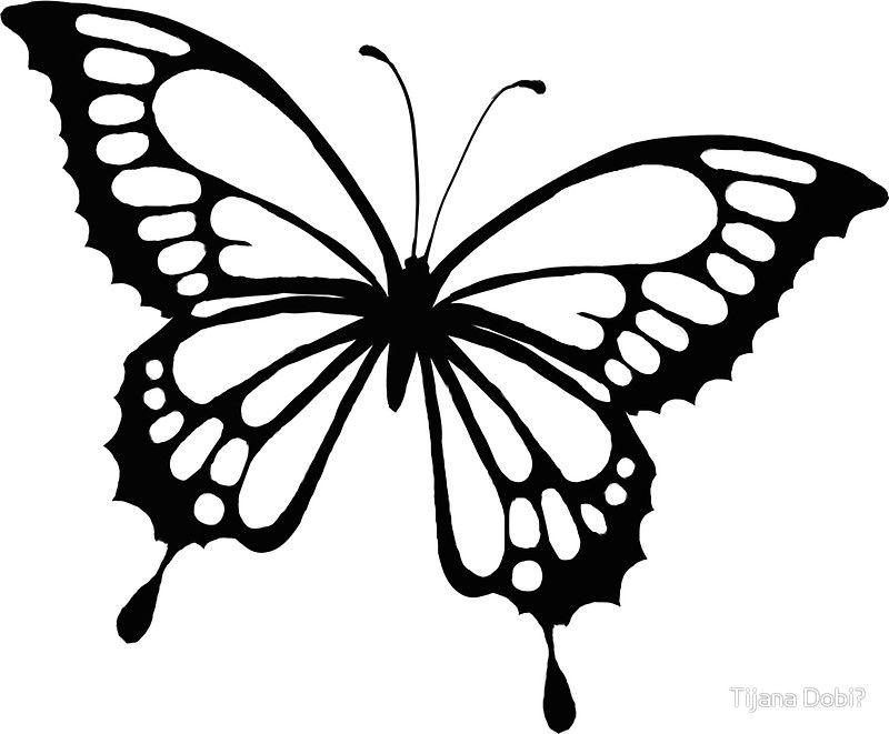 Ink Butterfly Sticker By Artstudio88 Butterfly Coloring Page Easy Butterfly Drawing Butterfly Drawing