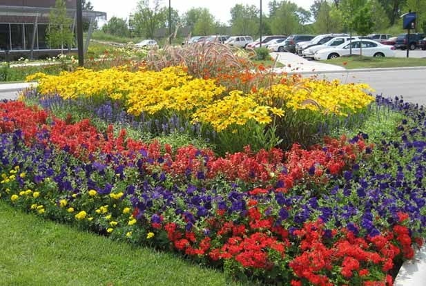 Flower Bed Edging Ideas Pictures Small And Green