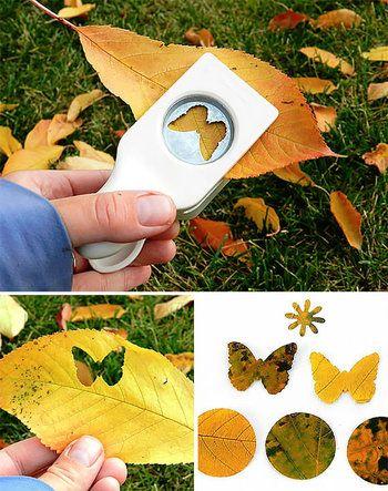 落ち葉をお気に入り模様でパンチして並べれば落ち葉の色味を活かしたアートに。画用紙などに並べて額装すると素敵な作品になります。