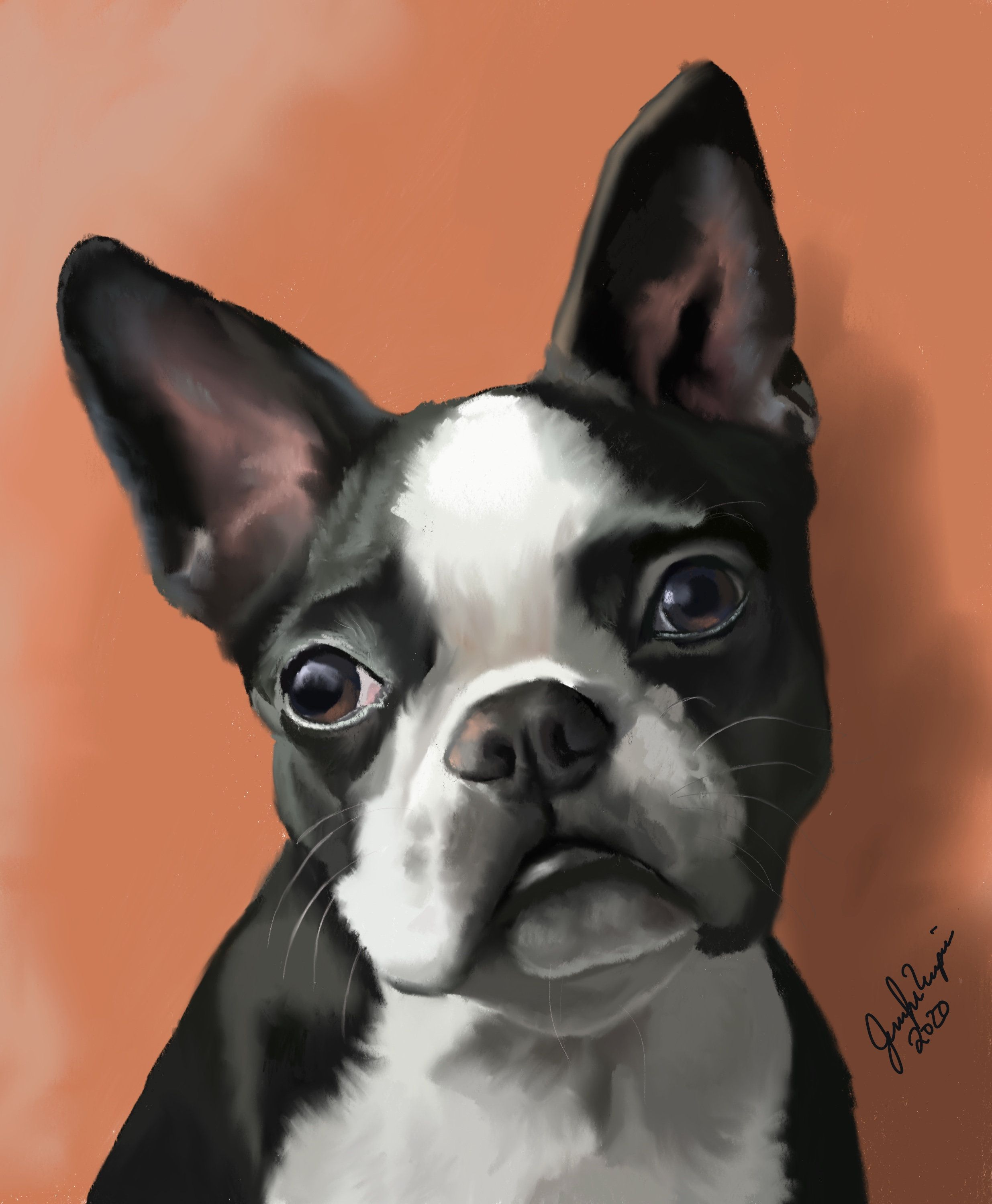 Boston terrier pet art and card etsy in 2020 animal