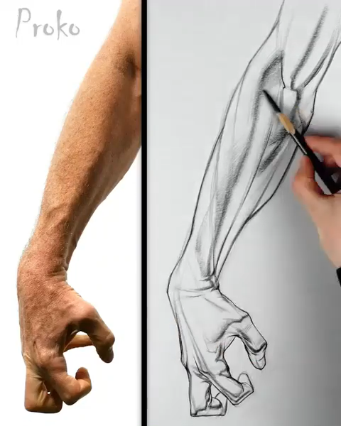 Still one of my favorite drawings from the anatomy course. Learn about the layin and shading process for the forearm. #drawing #shading #drawingtutorial