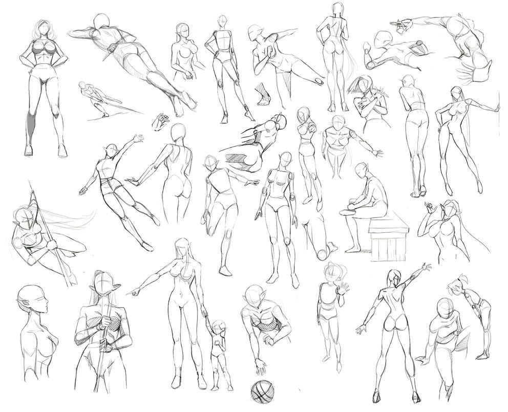 Female anatomy by Precia-T on DeviantArt | poses/ referencias ...