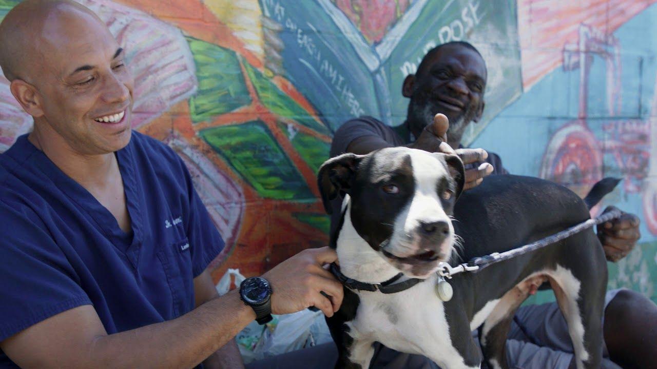 Dr kwane the street vet series trailer extended in