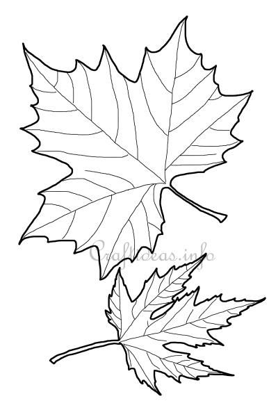 Maple Leaf Shapes Lets finish