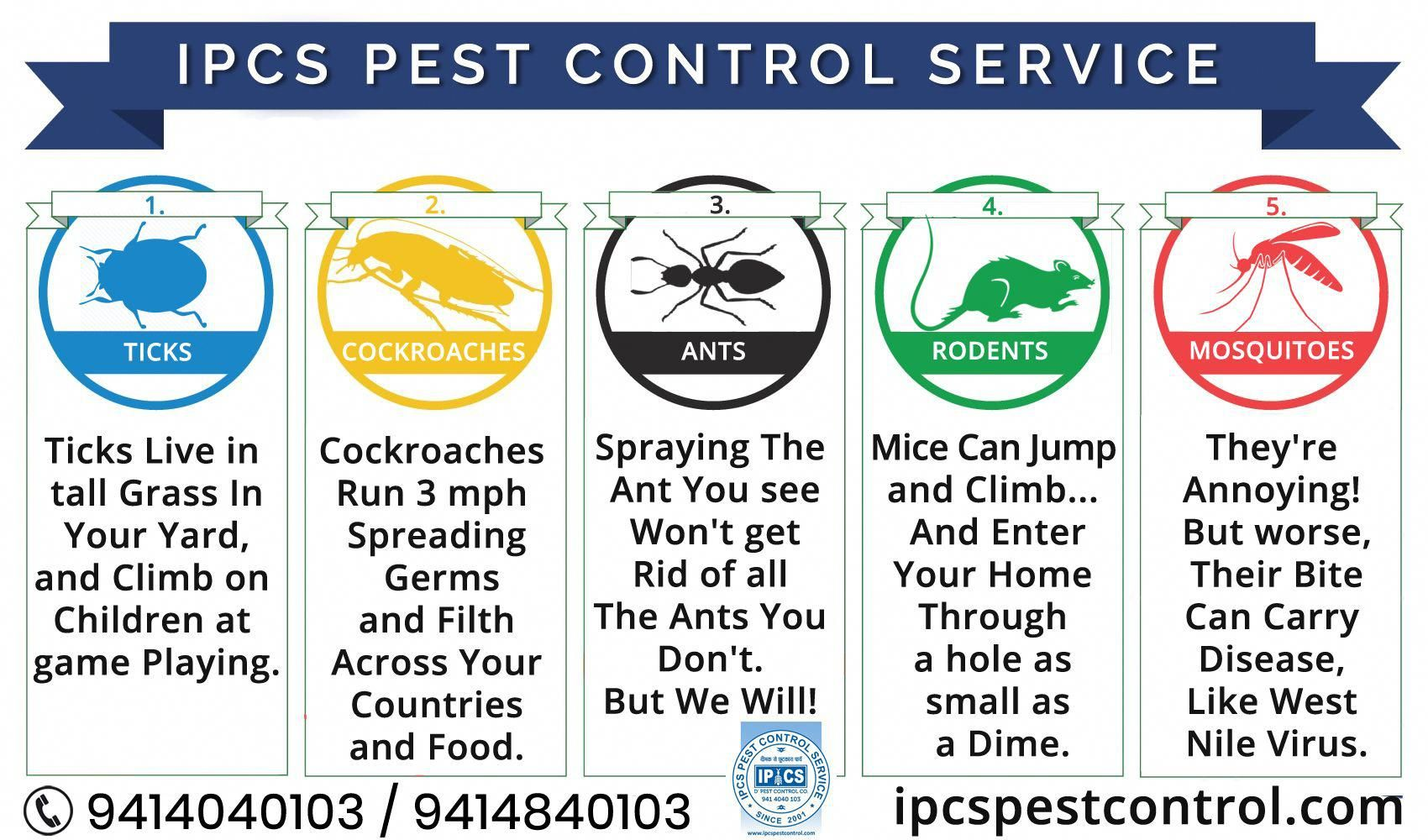 Looking for bird control services in Jaipur? IPCS Pest