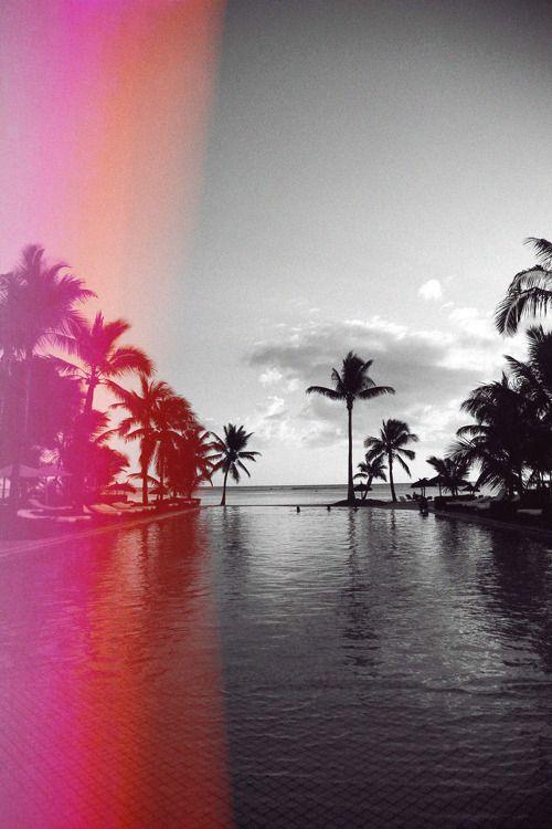 Dialogue/Weblog - hawaiiancoconut:   Neon lights and warm tropical...