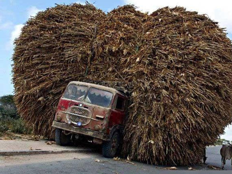 прикольные картинки с грузовыми автомобилями