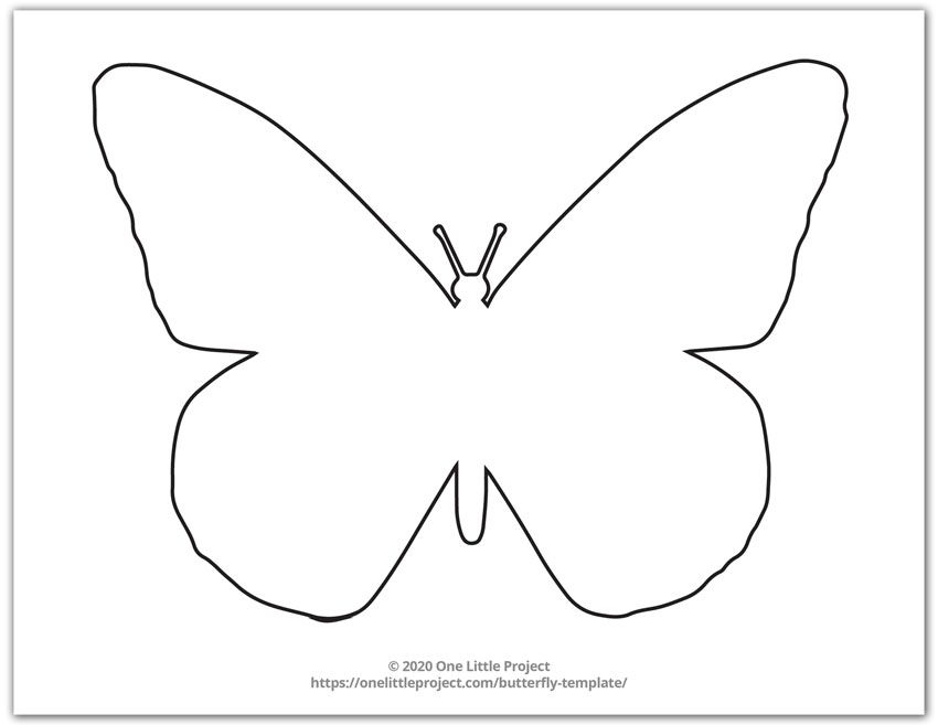 Large Monarch Butterfly Outline 5 In 2021 Butterfly Drawing Outline Butterfly Outline Butterfly Template