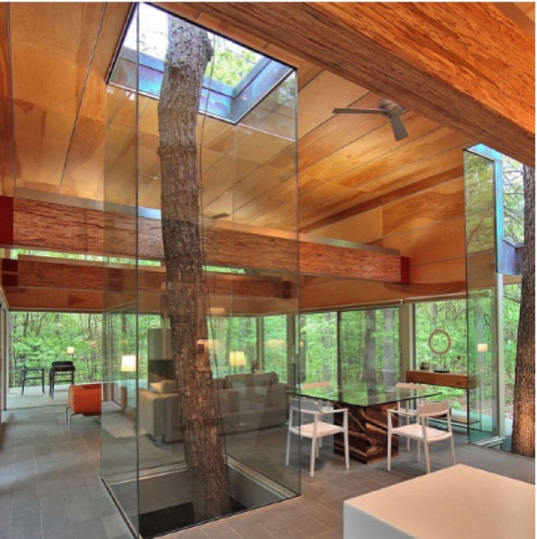 House built around trees nest pinterest for Houses built in trees