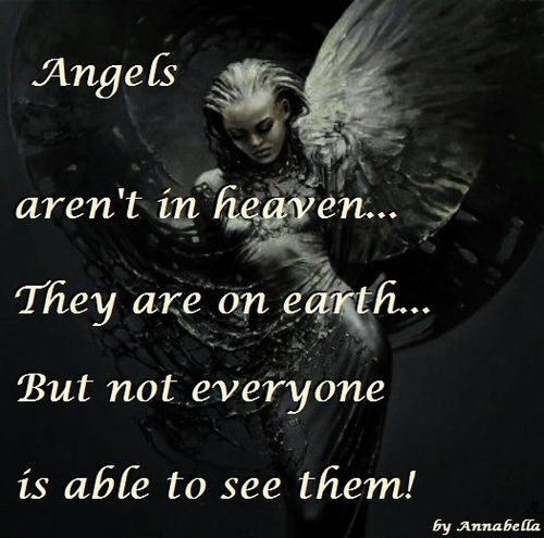Angel Quotes Funny Angel Quotes And Sayings Quotesgram