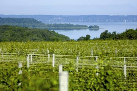 Wine Tours Traverse City Traverse City Wine Tour Traverse City Traverse City Wineries
