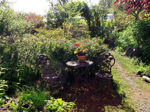 Permaculture Paradise at Bealtaine Cottage   Trees to ...