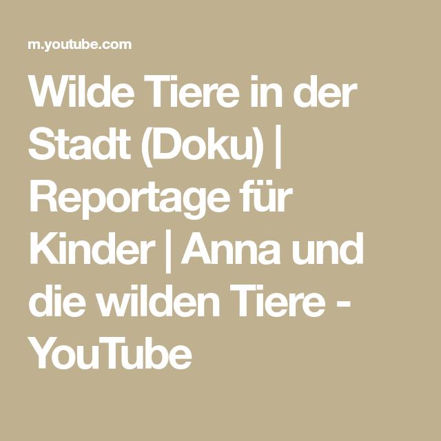 Wilde Tiere In Der Stadt Doku Reportage Fur Kinder Anna Und Die Wilden Tiere Youtube In 2020 Wilde Tiere Tiere Nagetiere