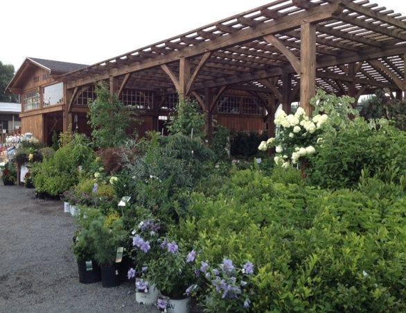 16 best Primex Garden Center images on Pinterest | Garden, Backyard ...