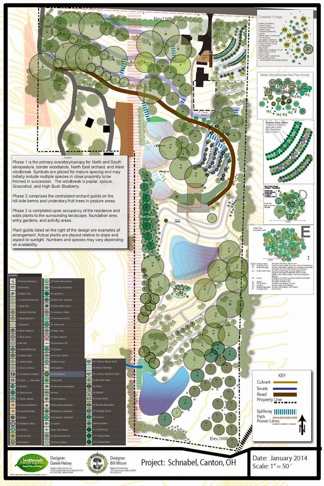 Mandala Market Gardens The Layout: PERMACULTURE AND PERENNIAL FOOD FOREST DESIGN