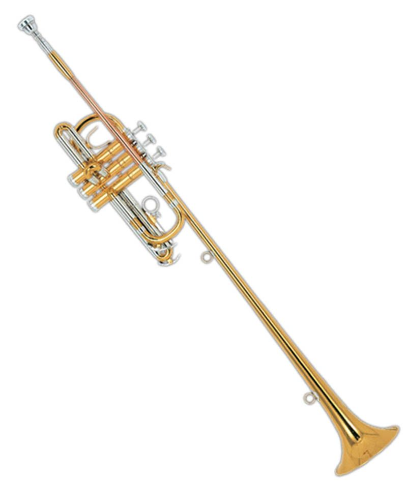 Harold Trumpet (Fanfare Trumpet) designed to introduce royalty. There are rings on the bell to hang a small royal banner or standard.
