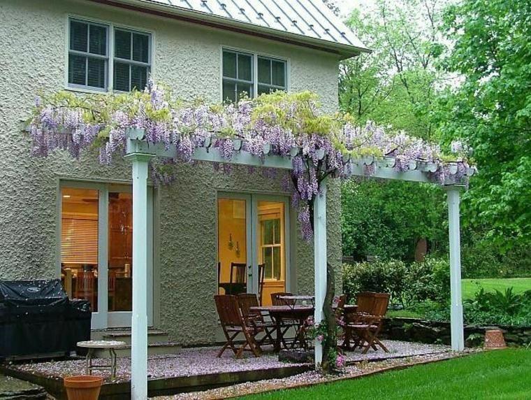 Glicinia Eine Schone Blume Um Decks Von Garten Zu Schmucken Gartenterrasse Flowers Blauregen Garden Idee Outdoor Pergola Wisteria Pergola Pergola Plans