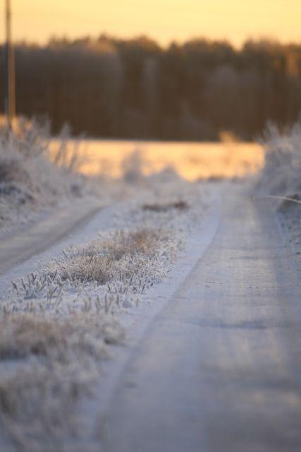 Talvinen tie.