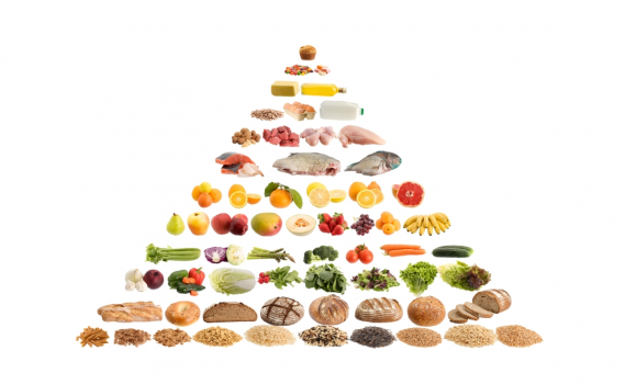 healthy food pyramid and australian guidelines to healthy eating