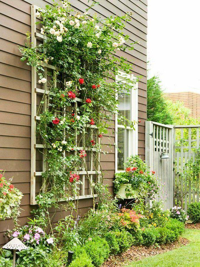 les plantes grimpantes beaucoup d 39 id es pour le jardin. Black Bedroom Furniture Sets. Home Design Ideas