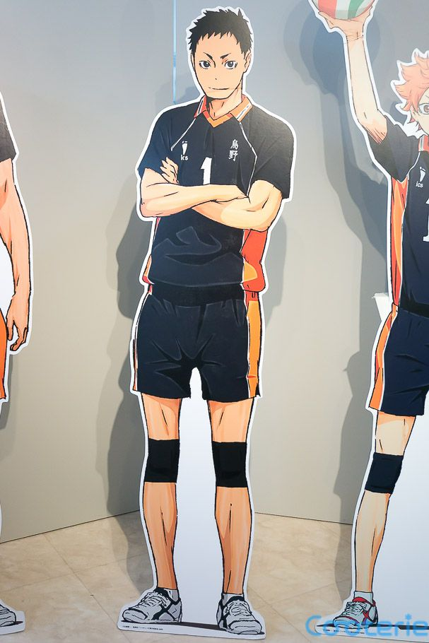 Haikyuu Sawamura Daichi Karasuno High School Volleyball Club Lifesize Cardboard Cutouts Haikyuu Karasuno Watch Haikyuu