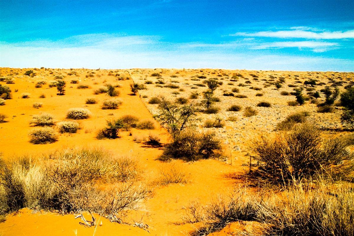 Kalahari Desert | kalahari desert Kalahari Desert | DESERT ...