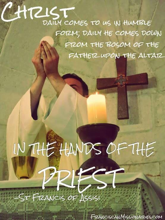 The Catholic Priesthood